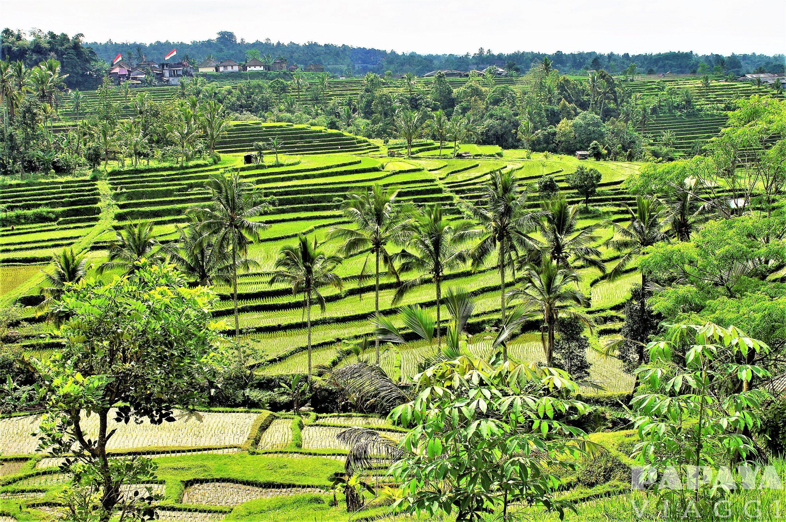 Indonesia, fra vulcani e spiagge